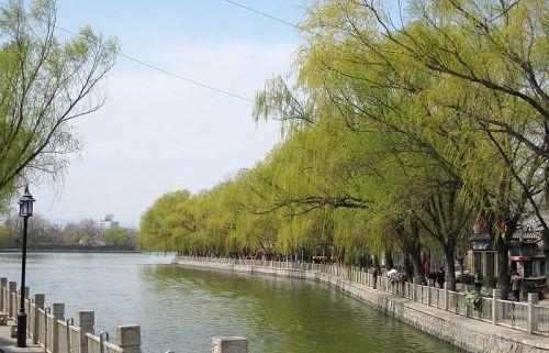 Taman Chaoyang di Beijing Chaoyang District